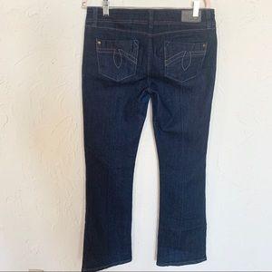 ANTHROPOLOGIE Level 99 Chloe Dark Jeans SZ 29